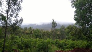 plot in chikmagalur for sale-min