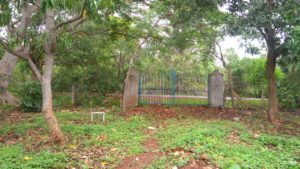 plots with mango grove chikmagalur-min