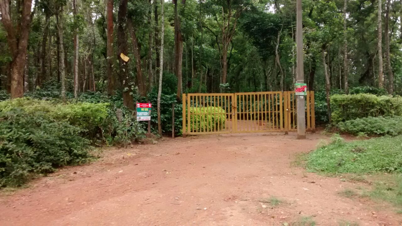 residential plot in coffee estate chikmagalur