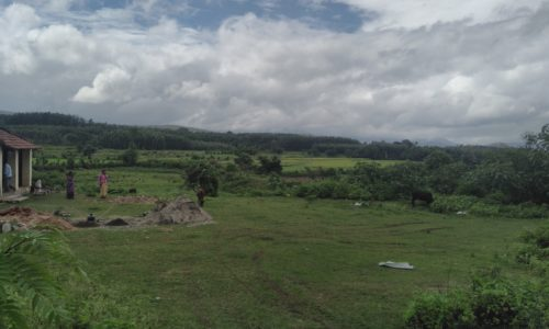 chikmagalur farmland for sale